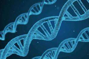 Genetica medica, il corso Fad con 8 Ecm