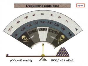 Il mare che c'è in noi: l'equilibrio acido-base